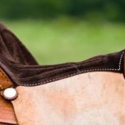 Equestrian Gel Saddle Pads